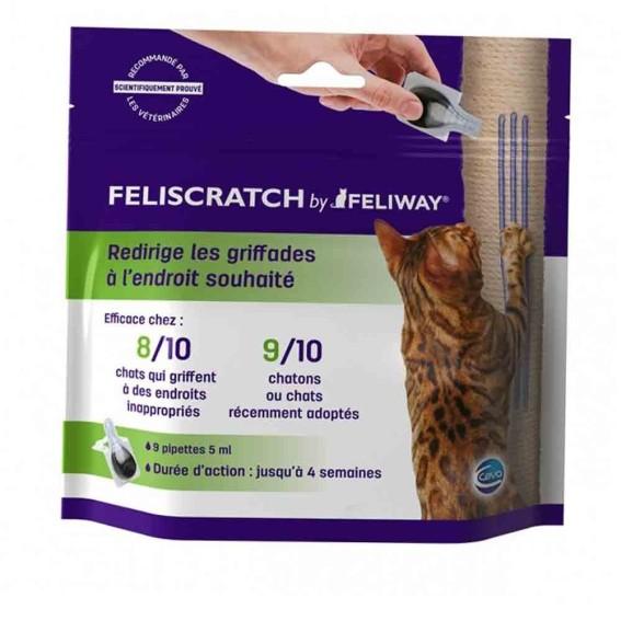 feliscratch-griffades-chats