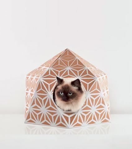 maison-pour-chat-catcube_6775439b-a6a6-4431-8f82-8ee8aa5ec519_large