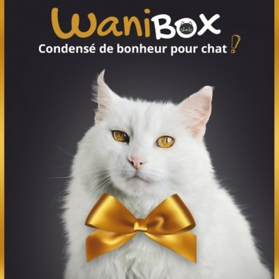 wanibox-for-cat